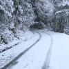 雪道走行の準備